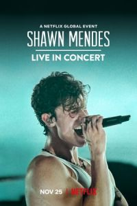 Shawn Mendes: Live in Concert (2020)